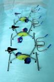 AquaSoins